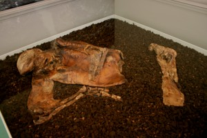 Lindow Man 2